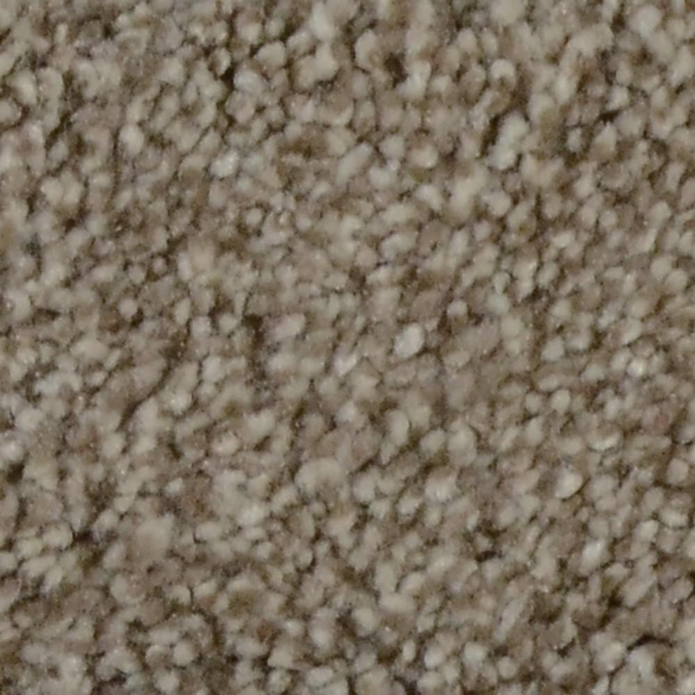 Carpet Sample - Sandy Beach II - Color Hammock Texture 8 in. x 8 in.