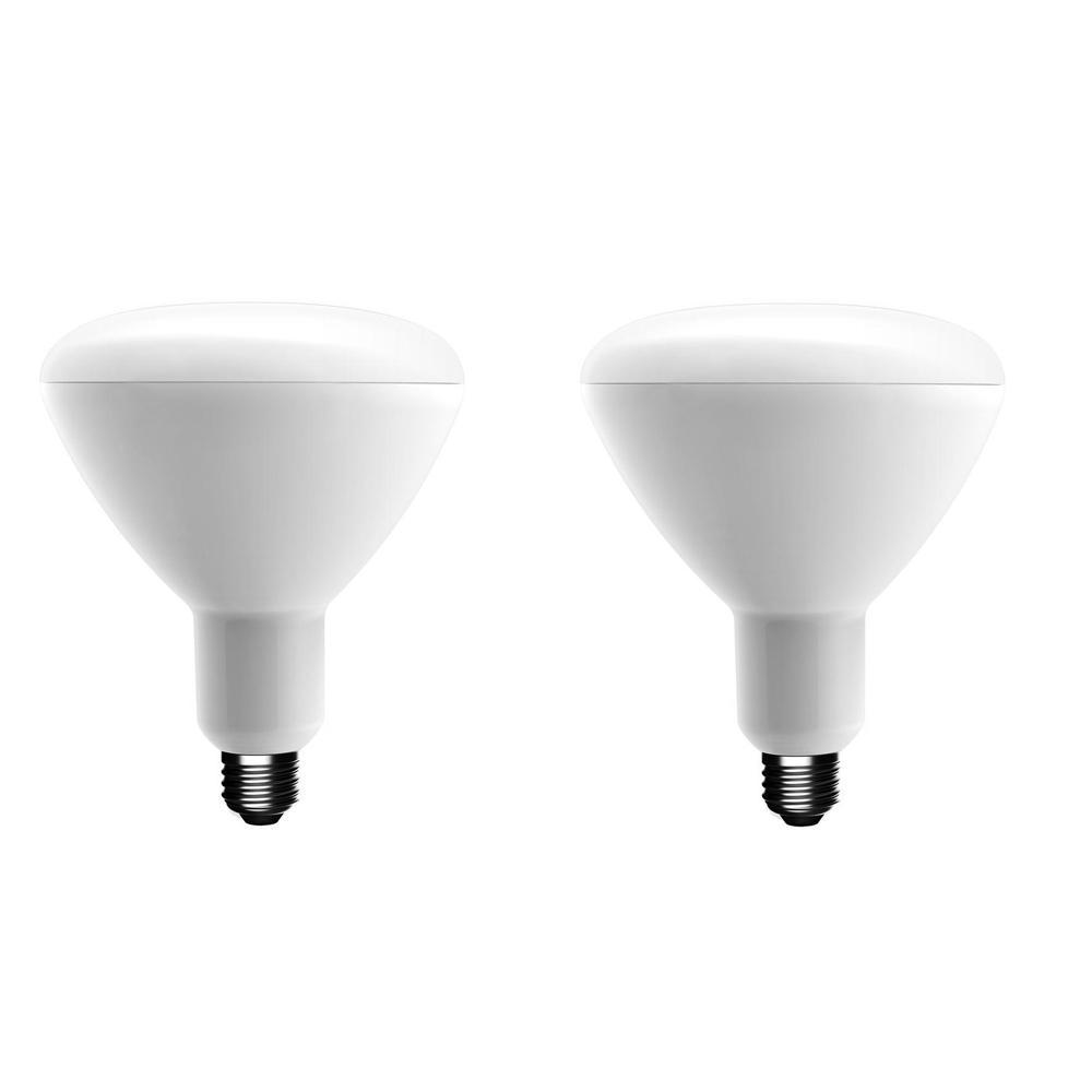 EcoSmart EcoSmart 75-Watt Equivalent BR40 Dimmable Energy Star LED Light Bulb Soft White (2-Pack)
