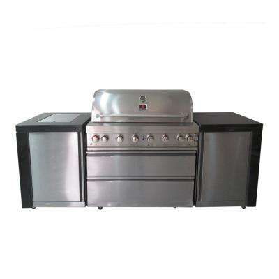 8-Burner Natural and Propane Gas Grill in Silver and Black