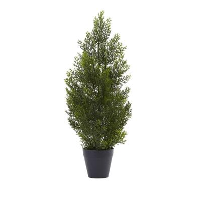 Indoor and Outdoor 2 ft. Mini Cedar Pine Tree