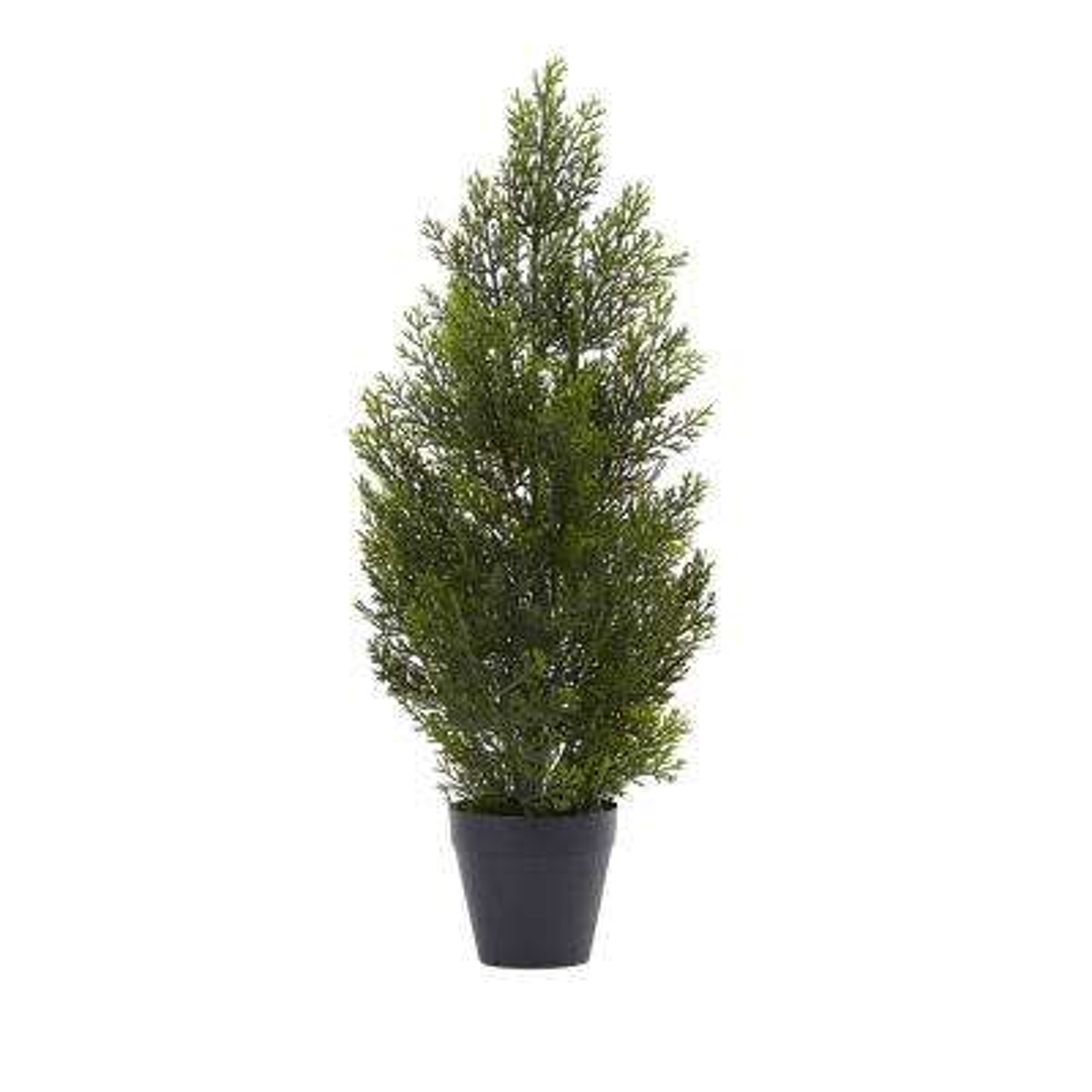 Indoor and Outdoor 2 ft. Mini Cedar Pine Tree