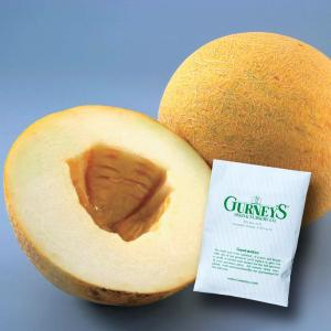 Gurney's Melon Gourmet Hybrid (10 Seed Package)-09517 - The Home Depot