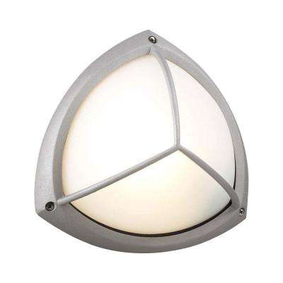 1-Light Outdoor Silver Wall Sconce with Frost Glass