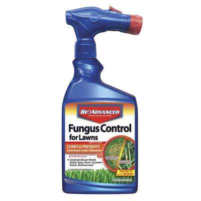 32 oz. Ready-to-Spray Fungus Control for Lawns