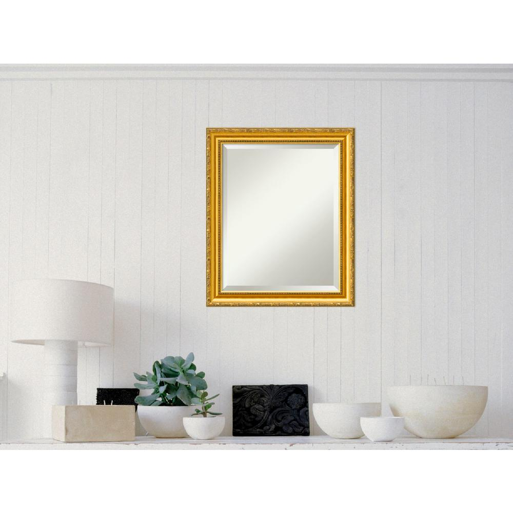 Amanti Art Colonial Embossed Gold Wood 20 in. W x 24 in. H Traditional Framed Mirror