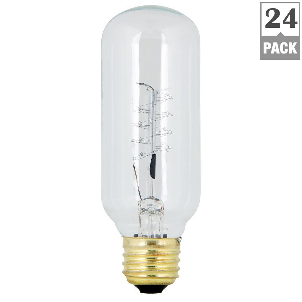 60-Watt Soft White (2200K) T14 Incandescent Original Vintage Style Light Bulb (Case of 24)