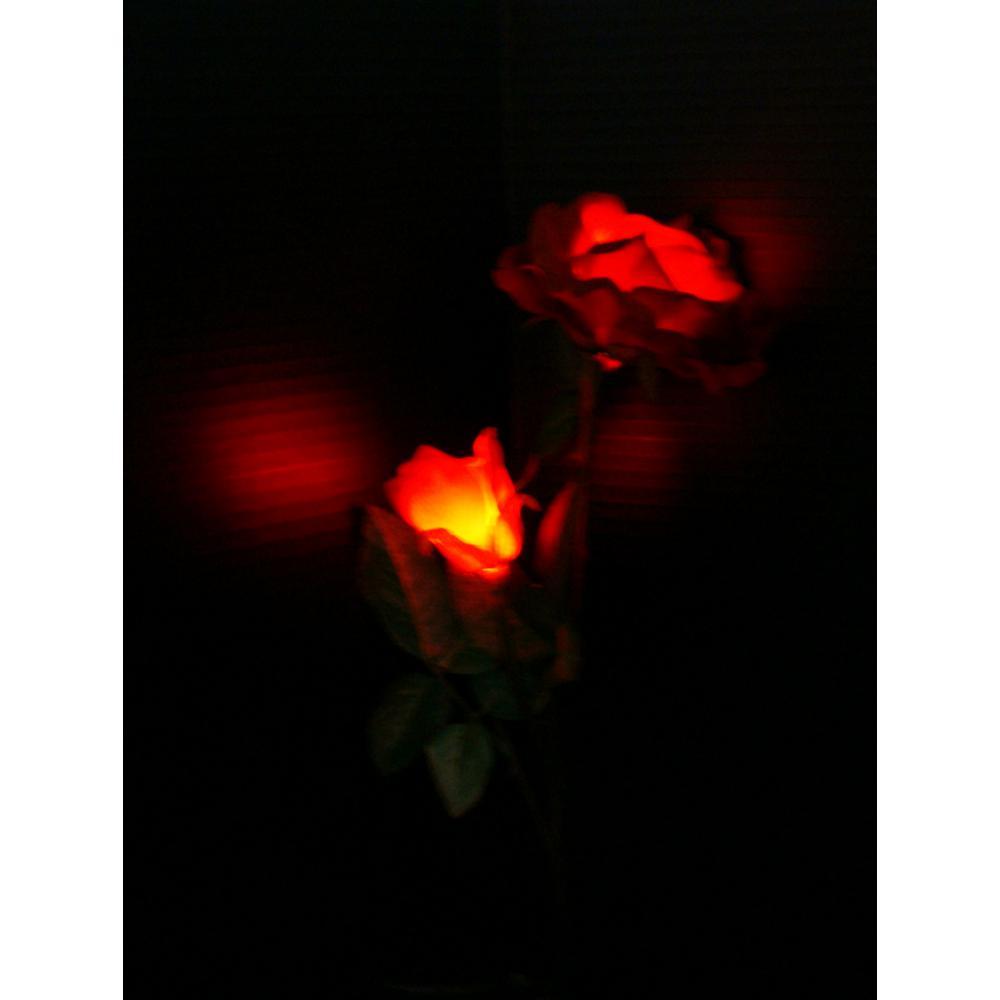 Solar Red Roses Garden Stake