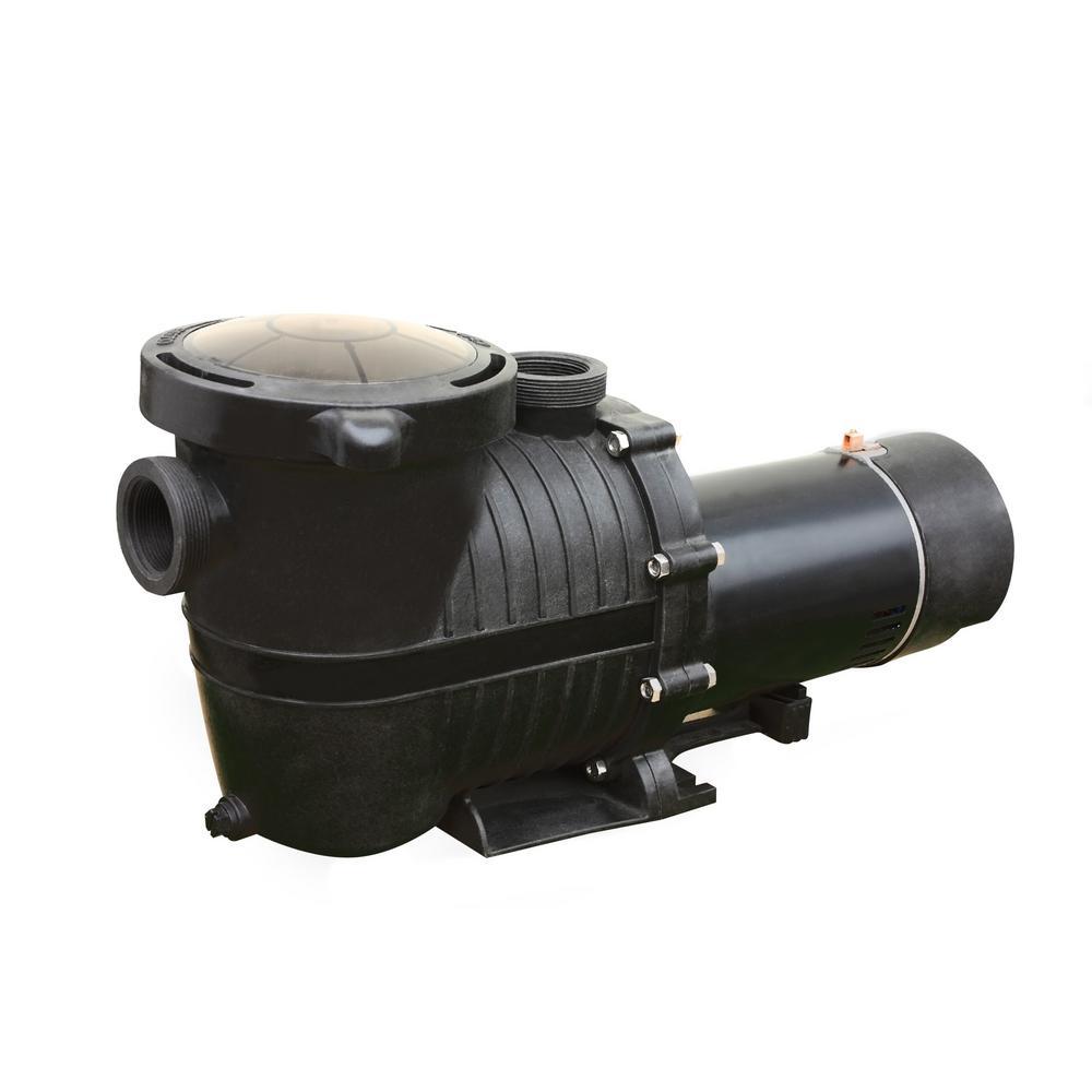 Pro II 3/4 HP In Ground 2-Speed Pool Pump, 2100-4380 GPH, 45 ft. Max Head