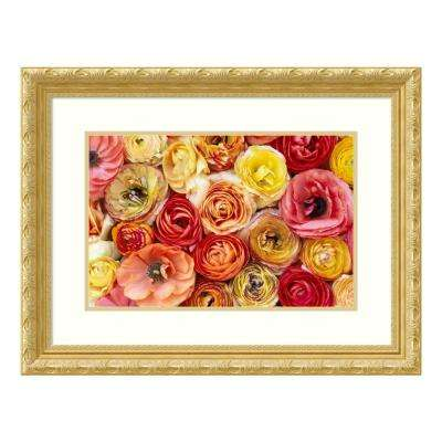 """Buttercup flowers, close up of a group of orange, pink, yellow and red flowers"" by Jan Vermeer Framed Wall Art"