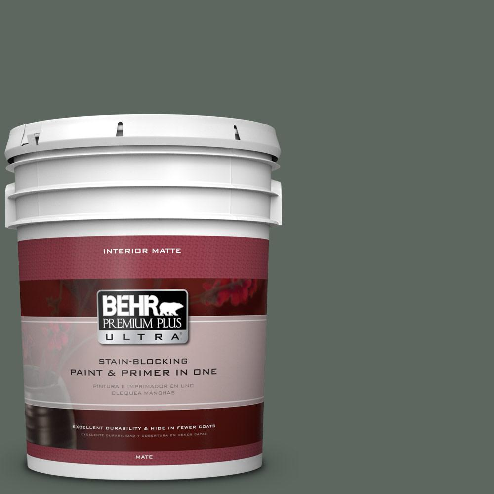 5 gal. #N420-6 Pine Mountain Matte Interior Paint