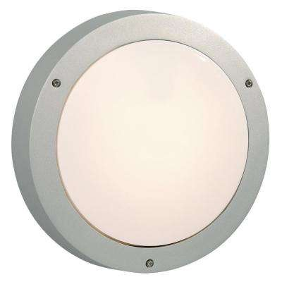 Negron 1-Light Outdoor Matt Silver Wall Light