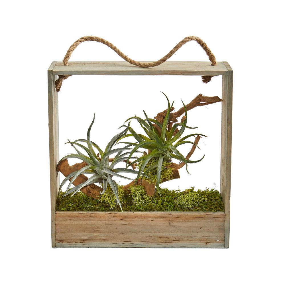 Nearly Natural Indoor Air Plant Artificial Succulent In Decorative Hanging Frame 8368 The Home Depot