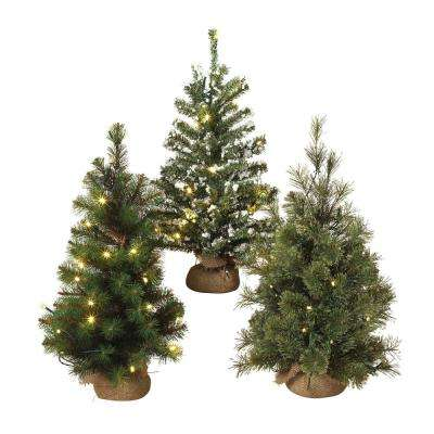 24 in. H Battery Operated Lighted Pine Trees (Set of 3)