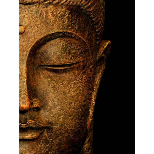 Cool 23 5 In X 31 5 In Serene Buddha Wall Art Home Interior And Landscaping Eliaenasavecom