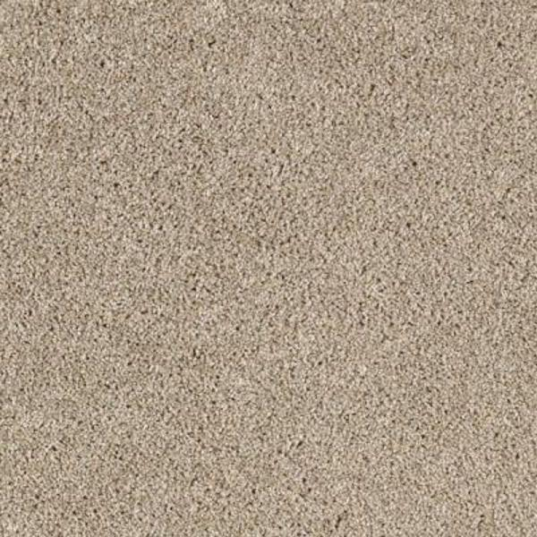 Lifeproof Carpet Sample Gorrono Ranch Ii Color Peaceful Texture 8 In X 8 In Mo 29905824 The Home Depot