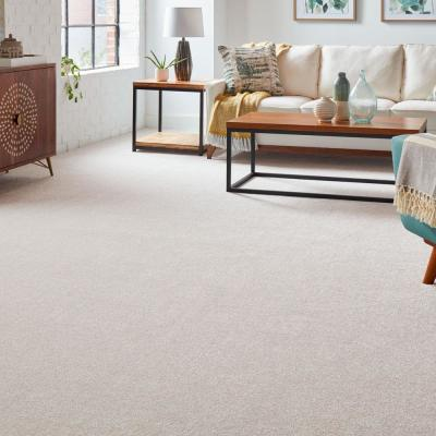 Silver Mane II - Color Quiet Taupe Texture 12 ft. Carpet