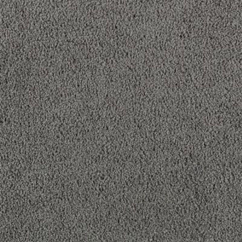 Carpet Sample - Wesleyan II - Color Pipe Grey Texture 8 in. x 8 in.