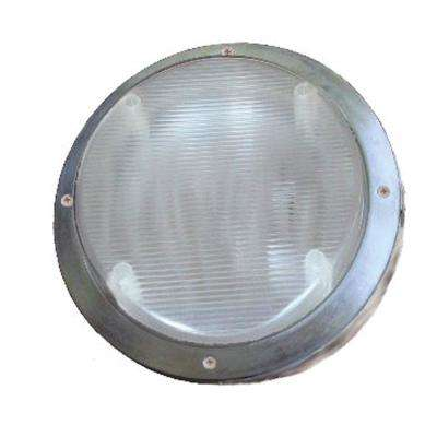 Star Lights Replacement Scare Light 2000 White