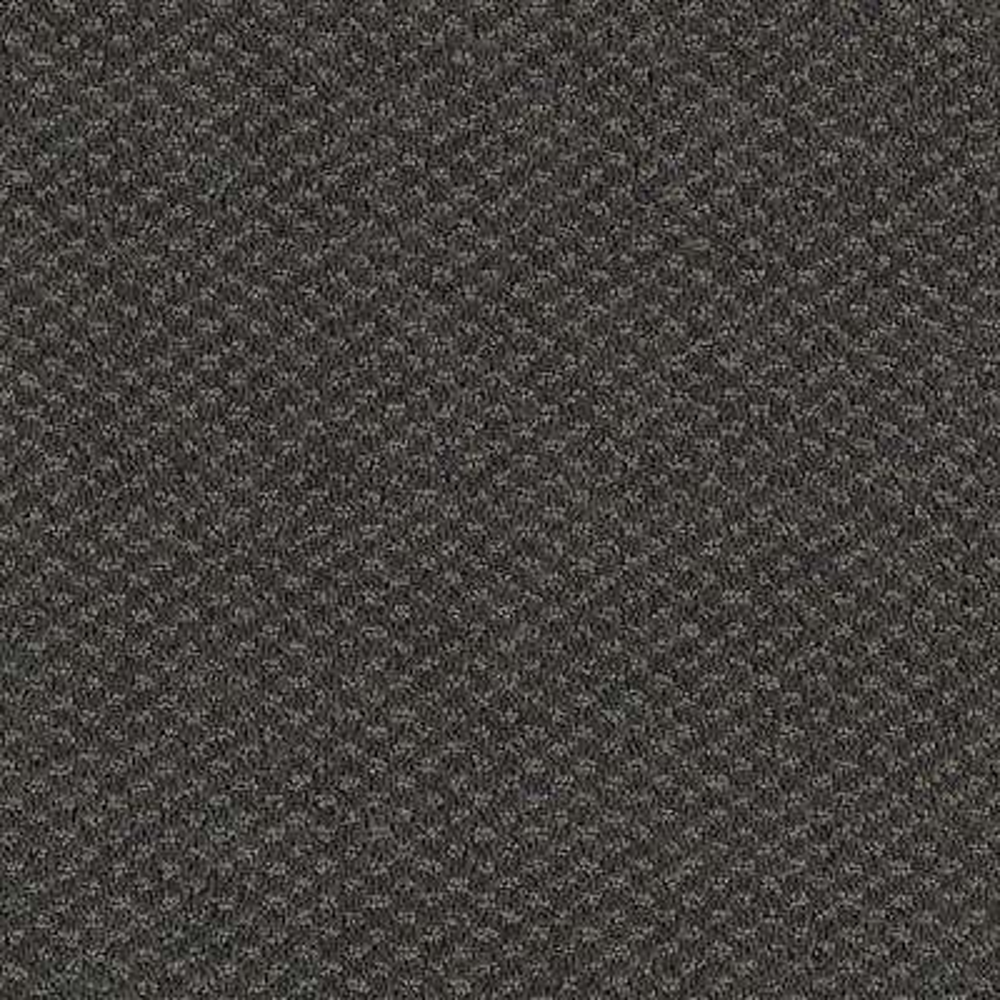 Carpet Sample - Katama II - Color Silhouette Pattern 8 in. x 8 in.