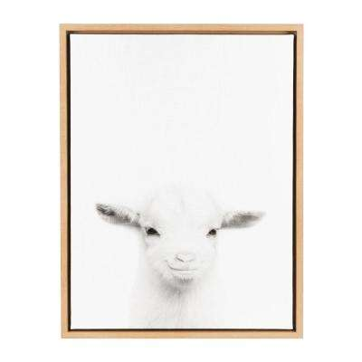 """24 in. x 18 in. """"Goat"""" by Tai Prints Framed Canvas Wall Art"""