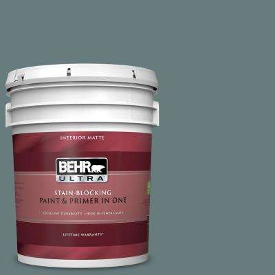 5 gal. #N440-5 Coney Island Matte Interior Paint and Primer in One