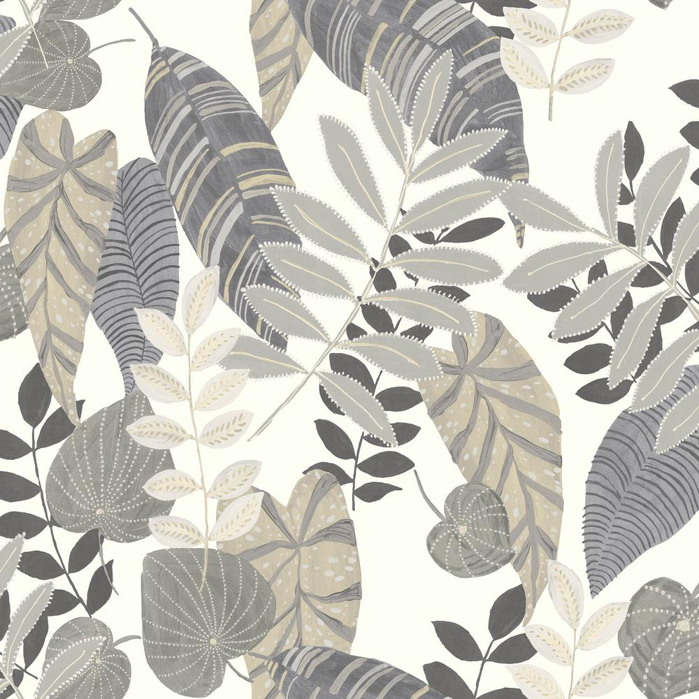 seabrook designs tropicana leaves charcoal stone and daydream gray botanical paper strippable roll covers 60 75 sq ft ry30908 the home depot seabrook designs tropicana leaves charcoal stone and daydream gray botanical paper strippable roll covers 60 75 sq ft ry30908 the home depot