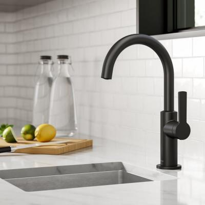 Oletto Single-Handle Kitchen Bar Faucet in Matte Black