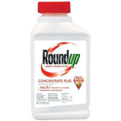 16 oz. Concentrate Plus Weed and Grass Killer