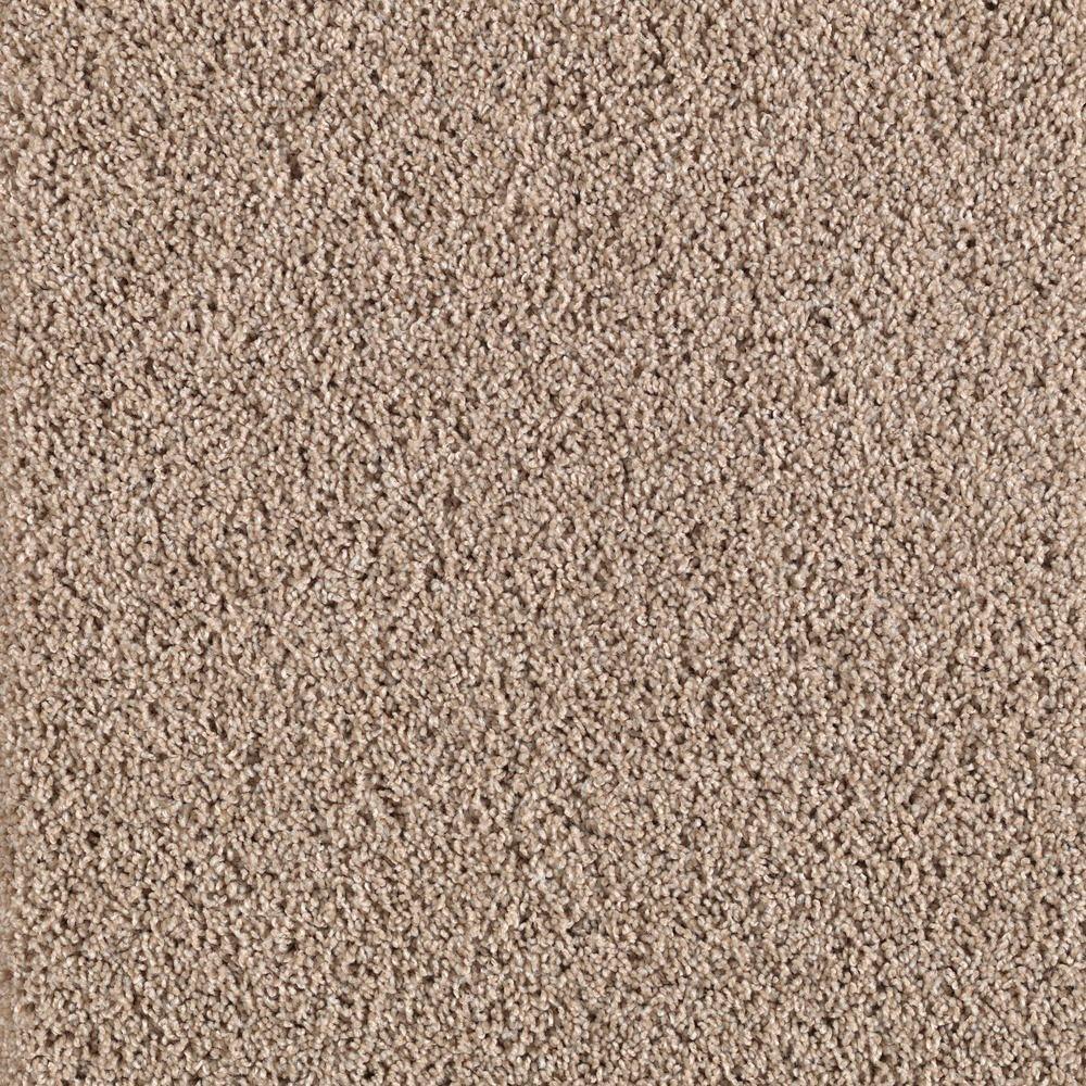 Platinum Plus Transcending - Color Royal Pecan 12 ft. Carpet
