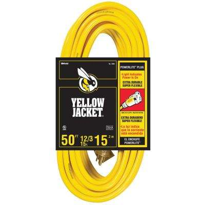 50 ft. 12/3 SJTW Premium Outdoor Heavy-Duty Extension Cord with Power Light Plug