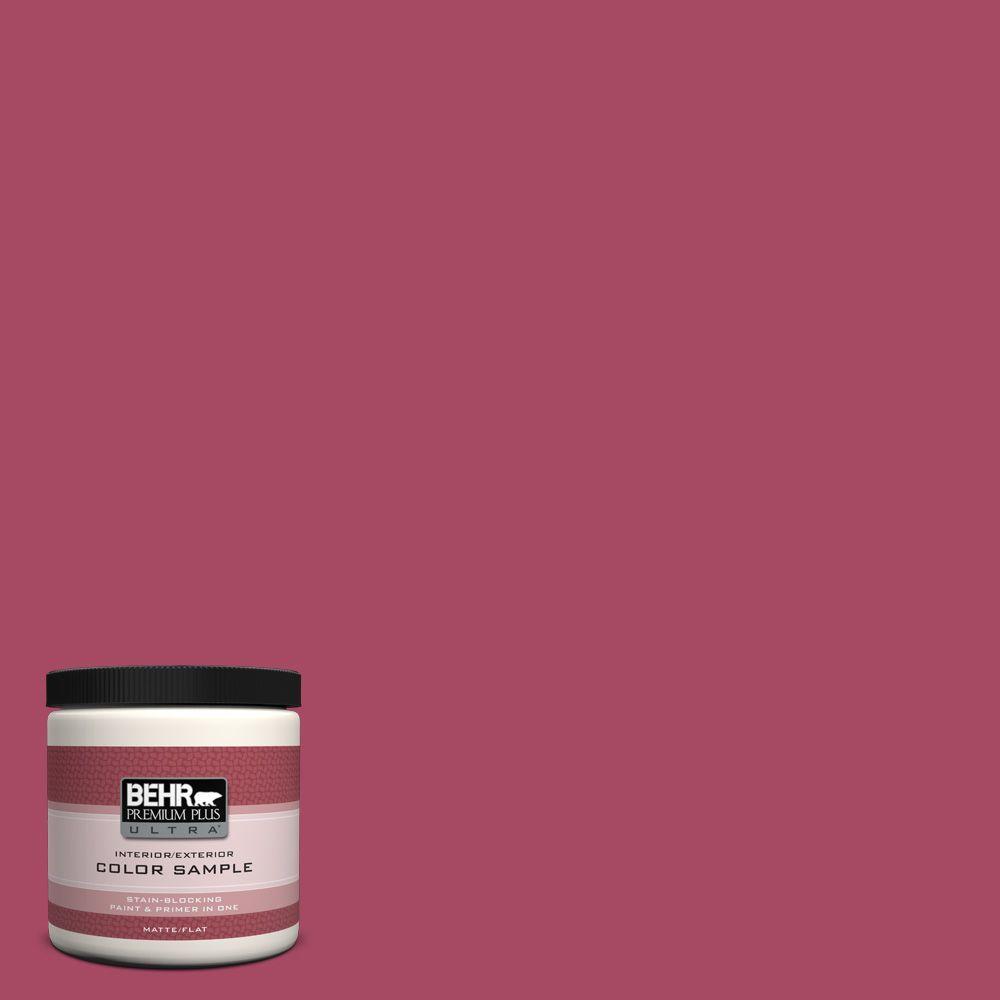 8 oz. #120D-5 Glazed Raspberry Interior/Exterior Paint Sample