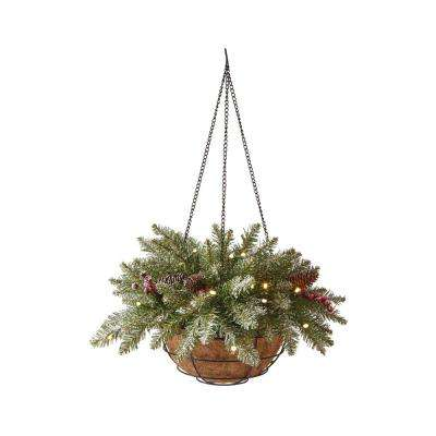 22 in. Pre-Lit Snowy Dunhill Fir Hanging Basket