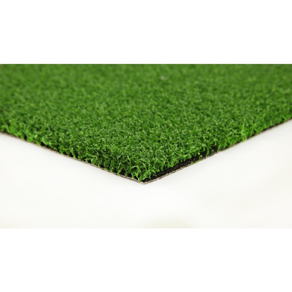 Putting Green 15 ft. Wide x Cut to Length Artificial Grass