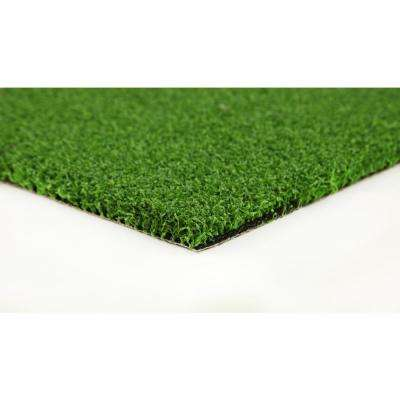 Putting Green - Artificial Synthetic Lawn Turf Grass Carpet for Outdoor Landscape - 15 ft. x Custom Length