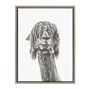 24 in. x 18 in. ''Brown Alpaca'' by Tai Prints Framed Canvas Wall Art