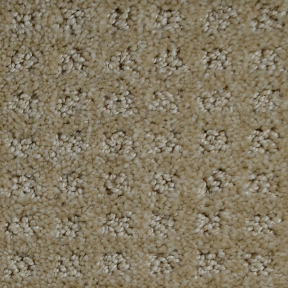 Home Decorators Jewels Carpet