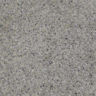 Carpet Sample - All The Best I - Color Bromley Texture 8 in. x 8 in.