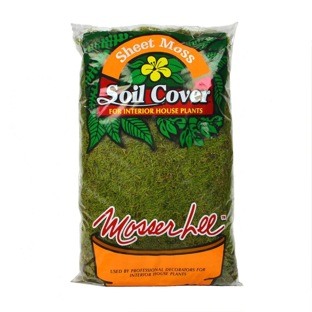 Mosser Lee 675 sq. in. Sheet Moss Soil Cover