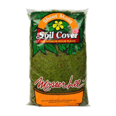 675 sq. in. Sheet Moss Soil Cover