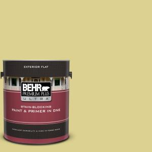 1 gal. #T17-16 Thats My Lime Flat Exterior Paint and Primer in One
