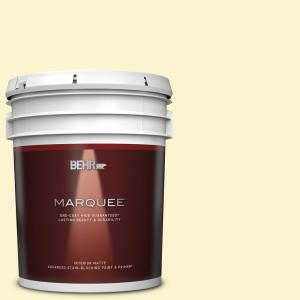 Behr Marquee 5 Gal P310 1 Effervescent Matte Interior Paint And Primer In One 145005 The Home Depot