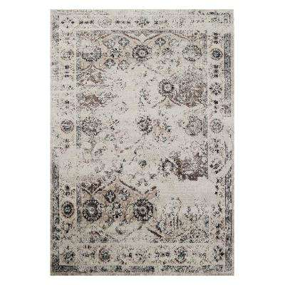 Cream/Brown 5 ft. x 7 ft. Distressed Area Rug