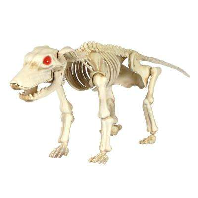 11 in. Animated Skeleton Dog with LED Illuminated Eyes