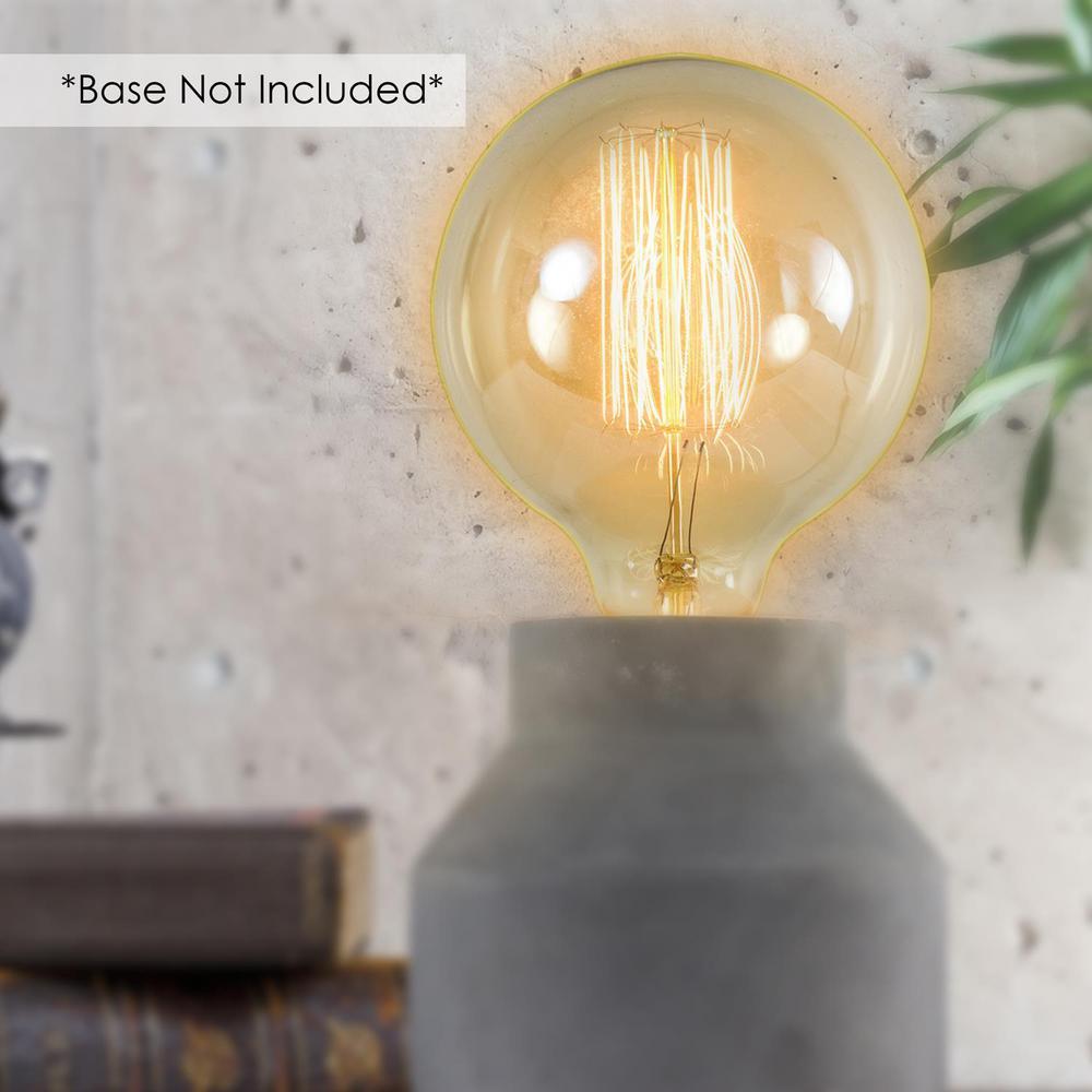 Vintage Edison 40-Watt Large Light Bulb