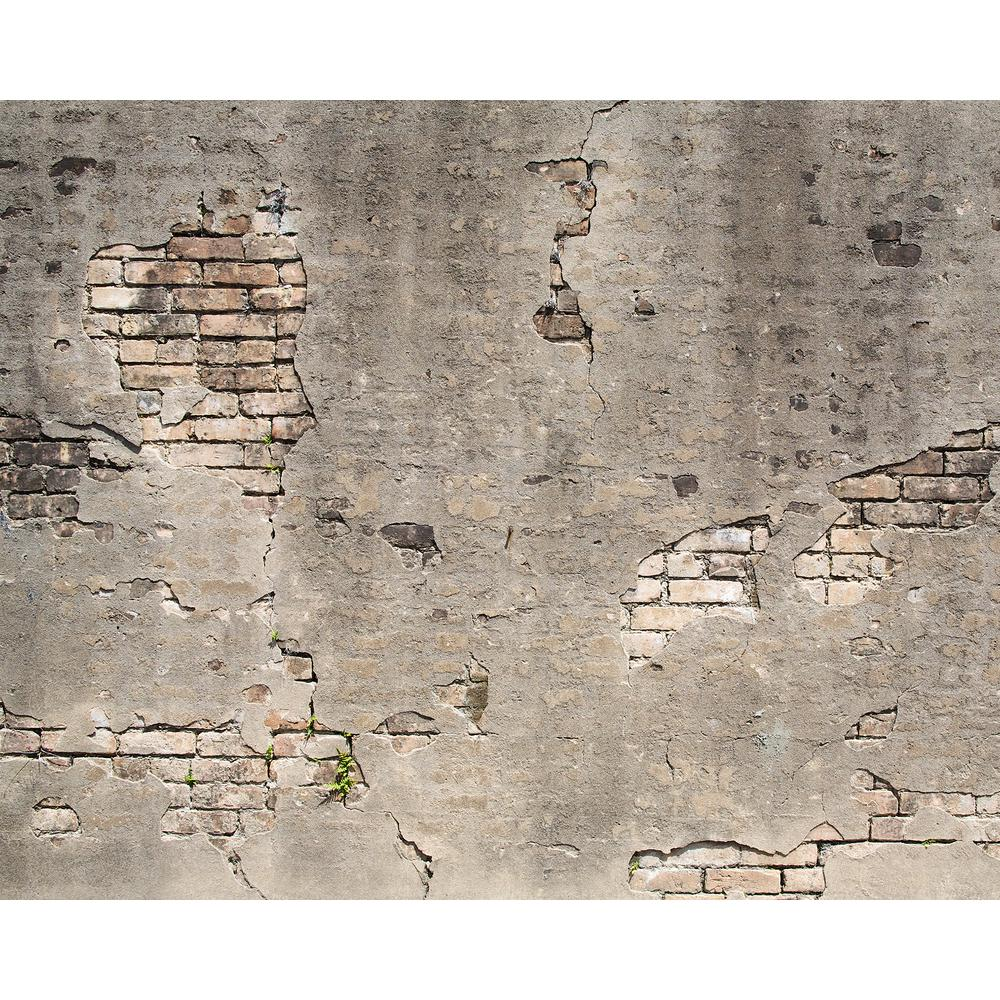 Broken concrete wall mural wr50520 the home depot for Broken wall mural