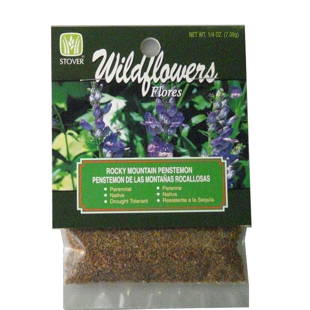 Rocky Mountain Penstemon Seed