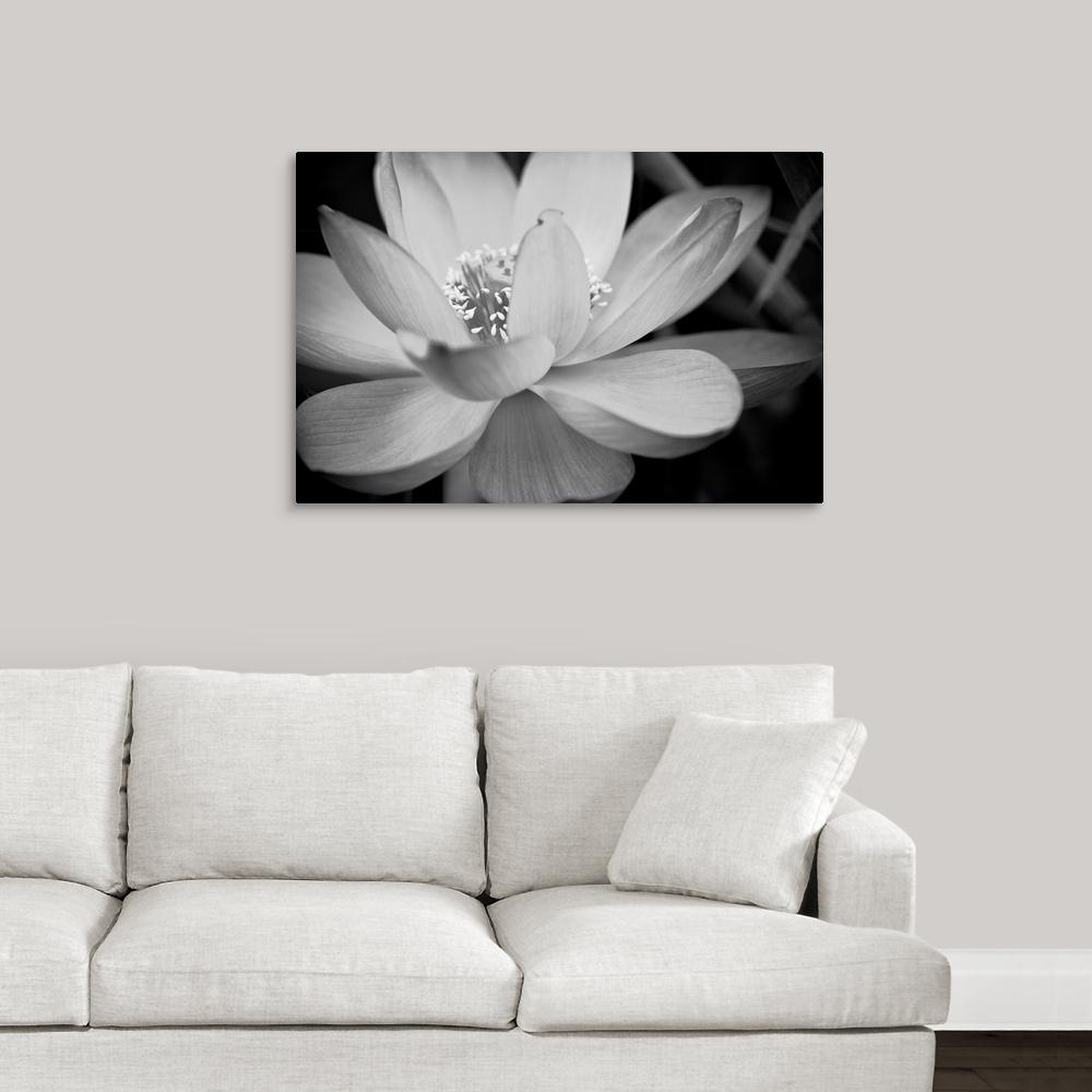 Black and white flower ii by dream on photography canvas wall art