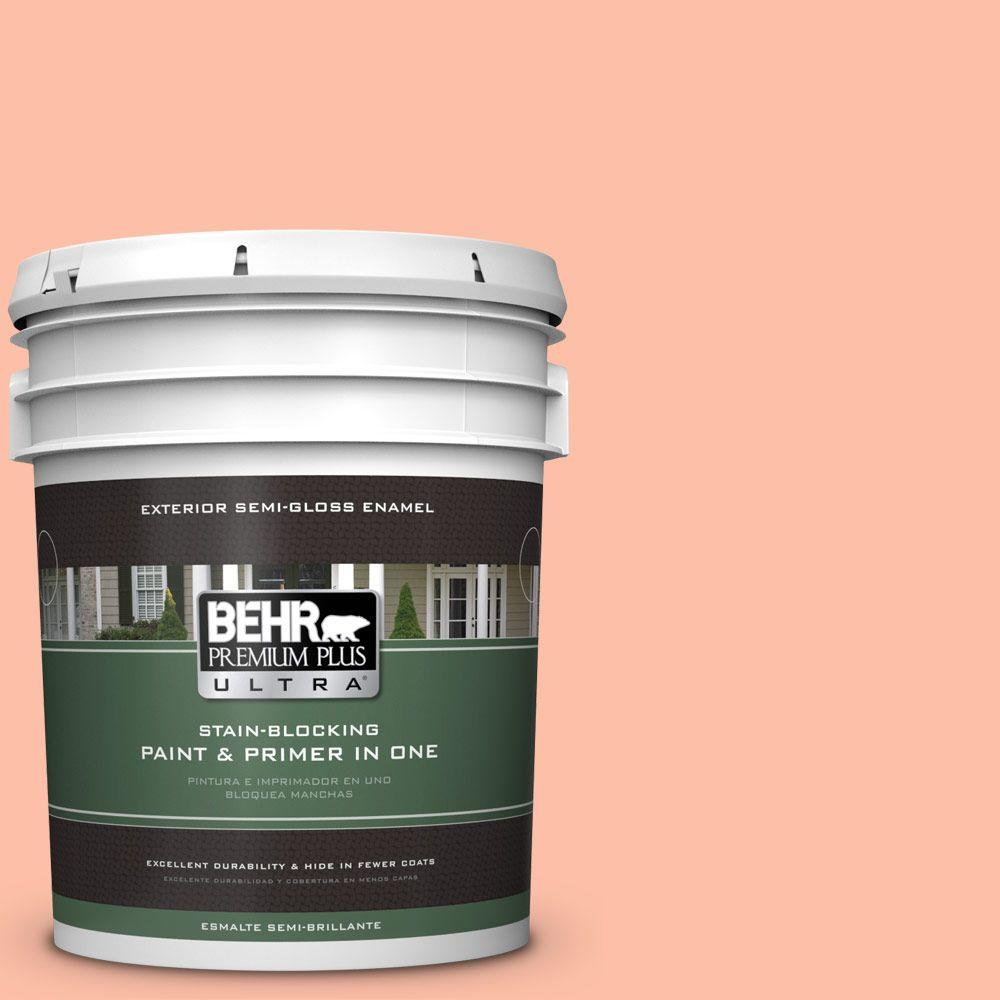 5-gal. #220A-3 Sweet Apricot Semi-Gloss Enamel Exterior Paint