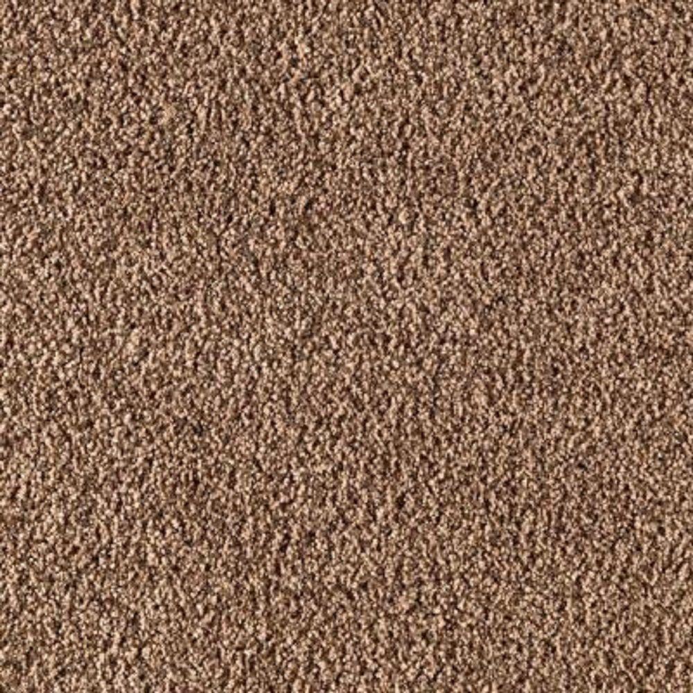 Carpet Sample - Metro II - Color Gingerbread Texture 8 in. x 8 in.