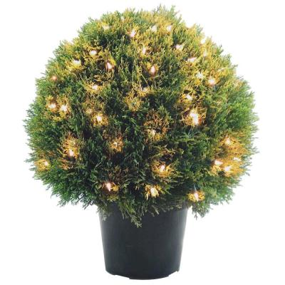 24 in. Cedar Pine Topiary with Round Green Growers Pot with 100 Clear Lights
